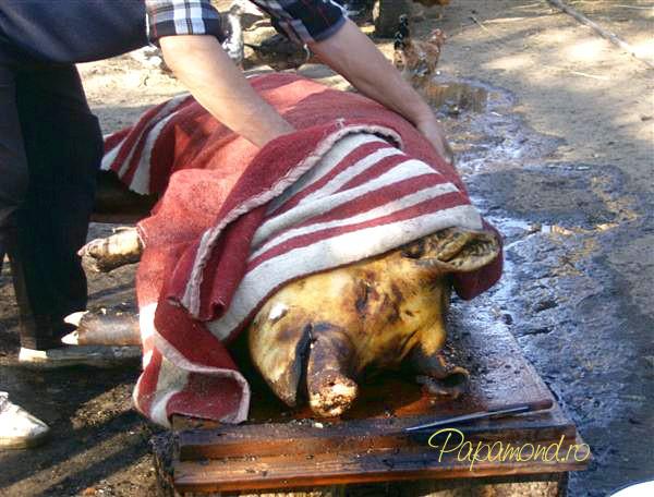Pulpa de porc cu cartofi - Taierea porcului