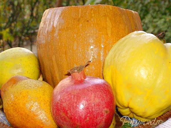 Fructe şi dovleac umplut