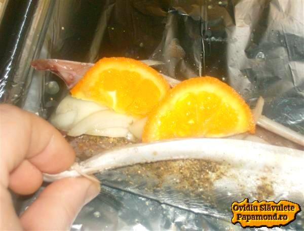 macrou umplut cu ceapa si mandarina