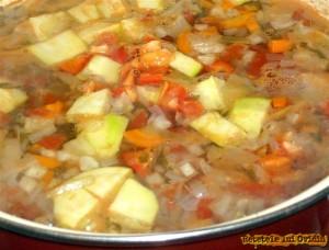 ciorba taraneasca de legume dreasa cu lapte batut