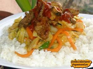 varza la wok cu porc si orez