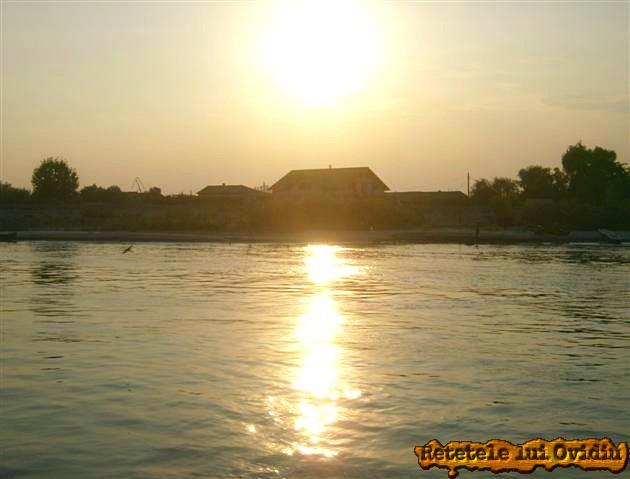 Delta Dunarii - www.papamond.ro