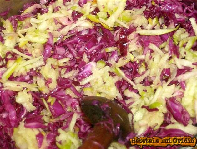 salata de varza rosie cu mere