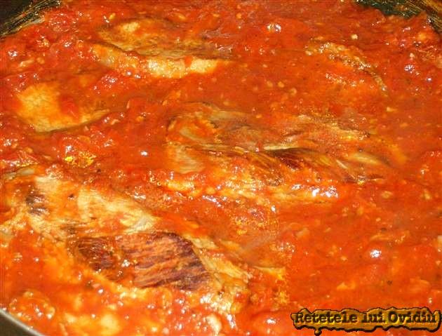 carne de porc in sos de rosii 11