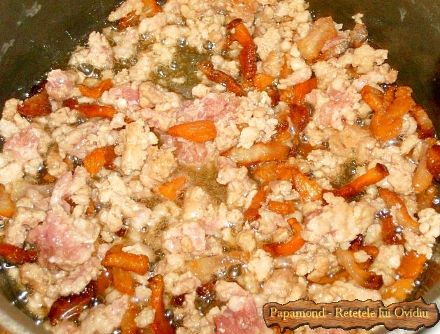 Varza cu carne tocata sau cum am rasfirat sarmalele (3)