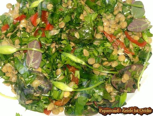 salata de linte cu leurda 10
