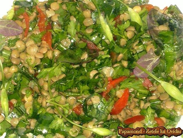 salata de linte cu leurda 5