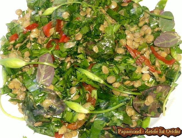 salata de linte cu leurda 9