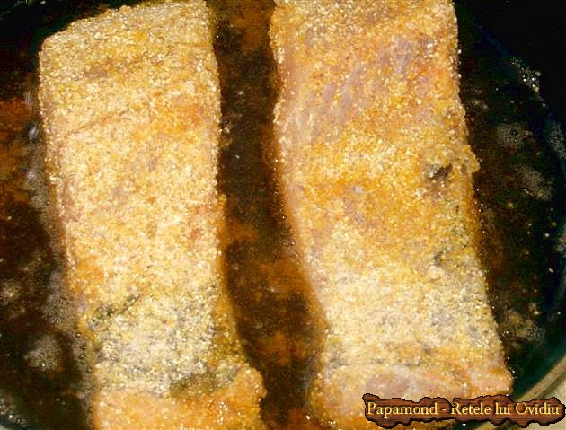 saramura de fitofag - fitofag prajit