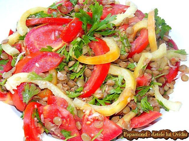 salata cu linte verde, rosii si ardei (2)