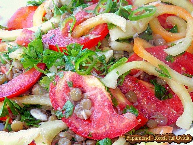 salata cu linte verde, rosii si ardei (7)