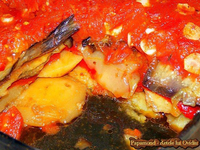 musaca de legume cu sos de rosii - www.papamond.ro (11)