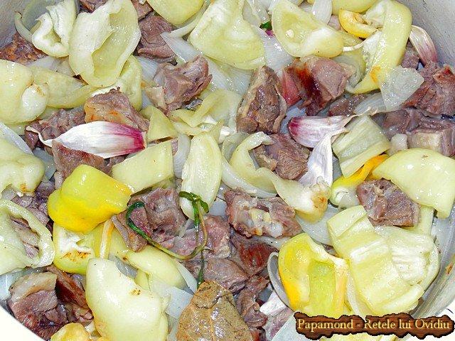 tocanita taraneasca de curcan cu sos pe saturate - Papamond.ro (3)