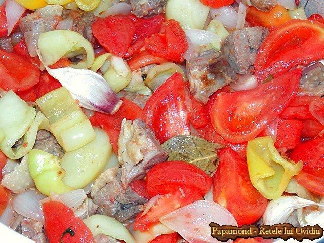 tocanita taraneasca de curcan cu sos pe saturate - Papamond.ro (6)