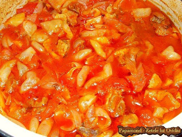 tocanita taraneasca de curcan cu sos pe saturate - Papamond.ro (9)