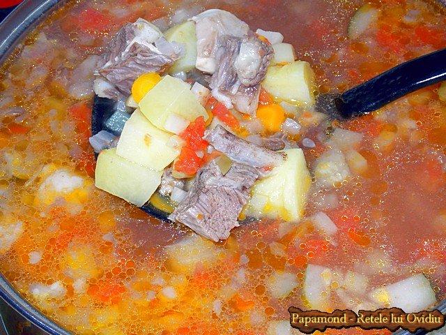 ciorba de vacuta - www.papamond.ro (4)