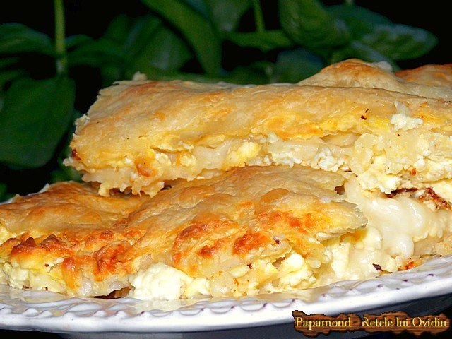 placinta cu branza sarata - www.papamond.ro  (13)