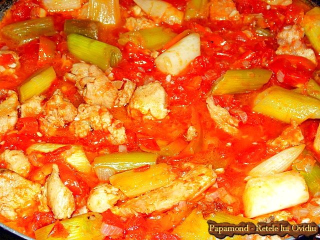 Tocanita din piept de pui cu praz. Servita cu crutoane - www.papamond.ro  (6)