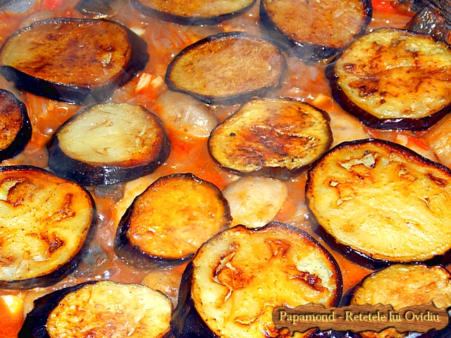 mancare de vinete cu carne de pui - www.papamond. ro (7)