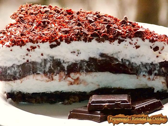 prajitura lasagna cu ciocolata - www.papamond. ro (28)