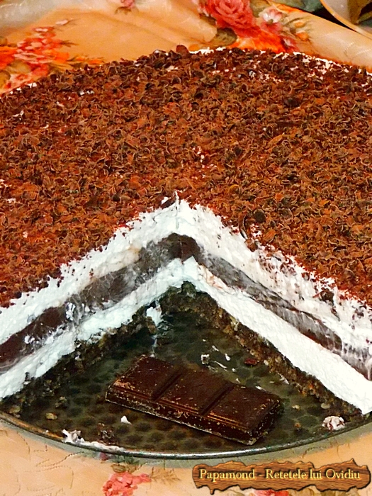 prajitura lasagna cu ciocolata - www.papamond. ro (29)