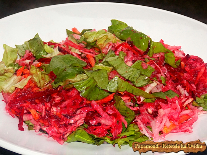 salata de radacinoase - www.papamond (10)