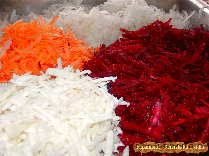 salata de radacinoase - www.papamond (4)