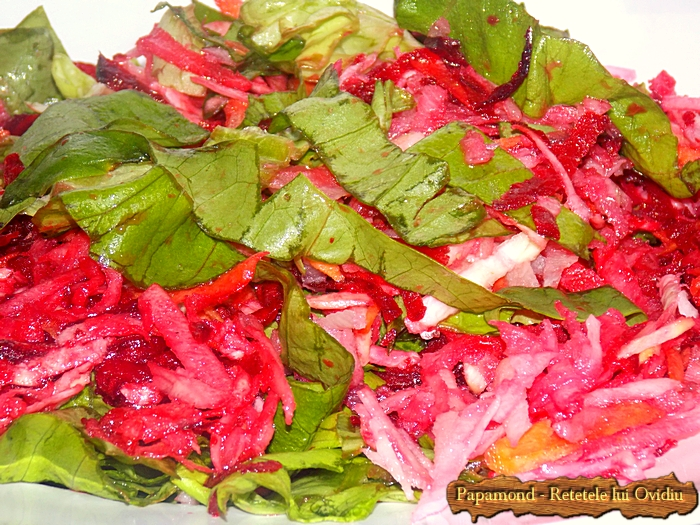 salata de radacinoase - www.papamond (9)