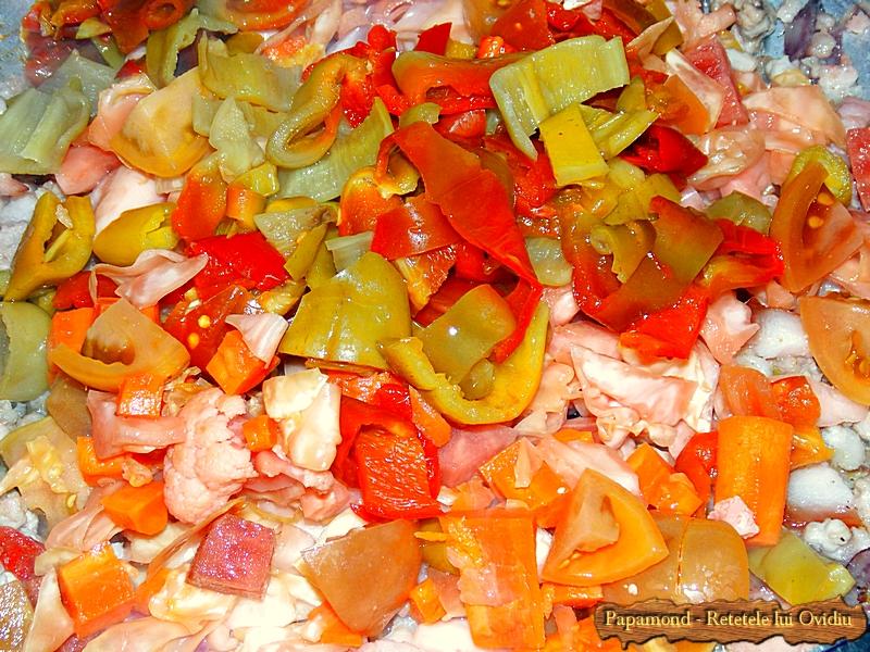 Mancare de muraturi cu carne - Papamond 5