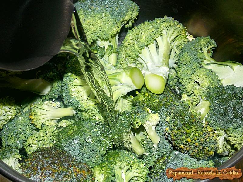 piept de pui cu piure de broccoli - www.papamond. ro (1)