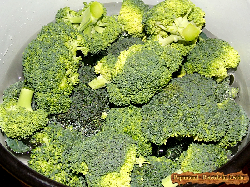 Piure de urzici cu brocoli. Cu piept de pui pe gratar 2