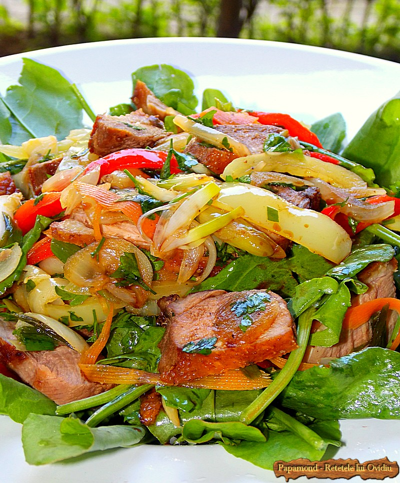 Salata Calda cu Legume si Piept de Rata (3)