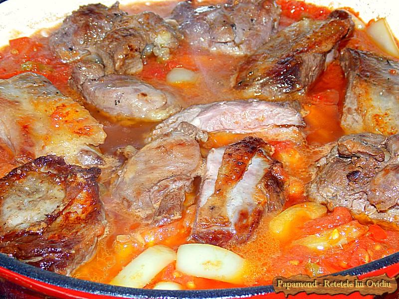 Ostropel de Curcan cu Piure de Cartofi (6)