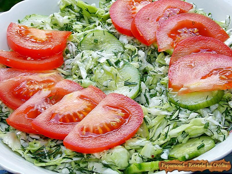Salata de Varza cu Castraveti si Marar (3)