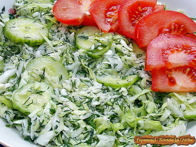 Salata de Varza cu Castraveti si Marar (4)