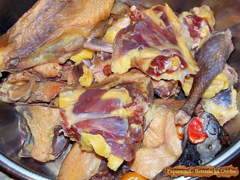 Ciorba de Bibilica - carne de bibilica