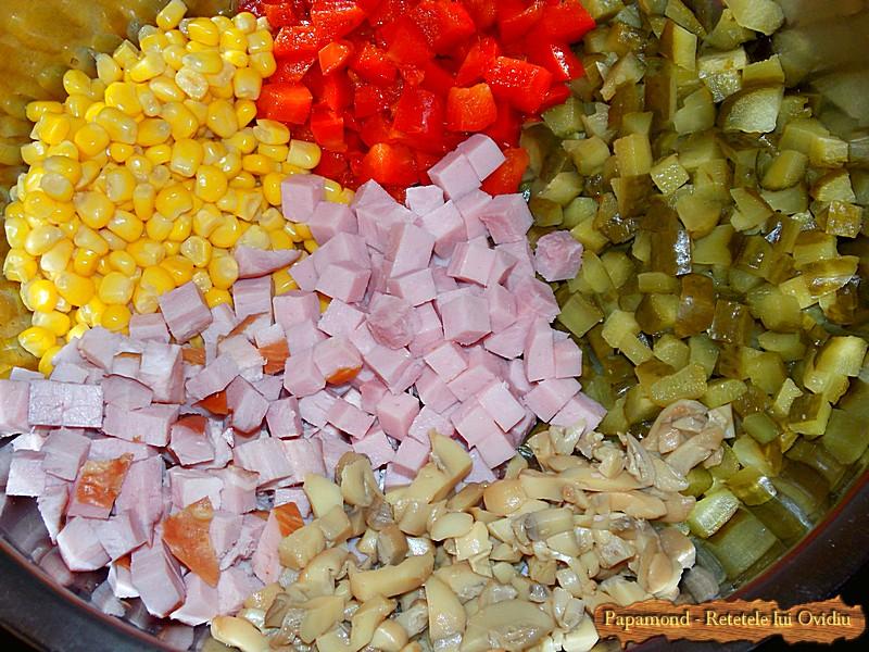 Salata de Paste 1